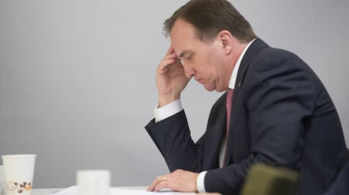 Socialdemokraterna tappar och Stefan Löfvens parti har nu 24,1 procent. Foto: Fredrik Sandberg/Tt