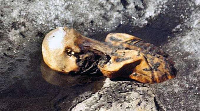 Med hjälp av en speciell programvara och modellen kan det sedan gå att återskapa den 5 300 år gamla mannens röst. Foto: Wiki Commons