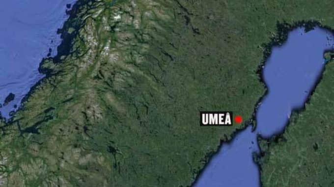 Maskerade personer sköt 26-åringen på hundpromenaden i Umeå.