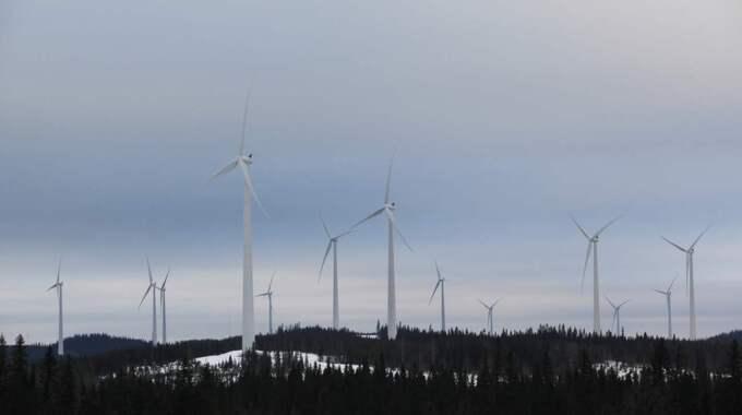 SNURRIGT VÄRRE. Vindkraftverken reser sig som jätteträd över det norrländska landskapet. Foto: Mats Andersson