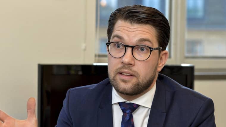 Sverigedemokraternas väljarstöd minskar för andra månaden i rad, enligt DN/Ipsos opinionsmätning. Foto: Jonas Ekströmer/TT