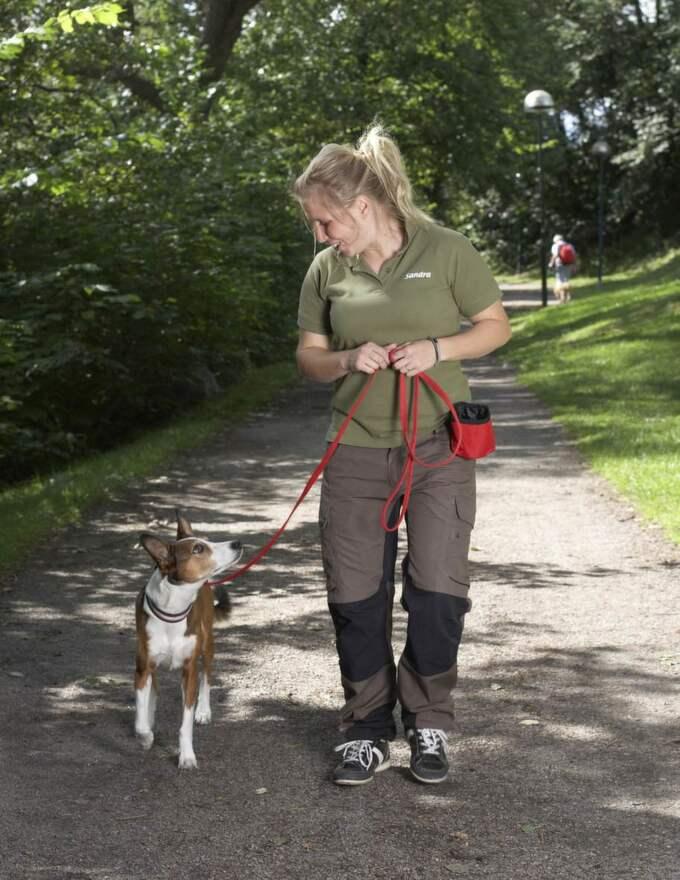 1. HÅLL TEMPOT. Hundar drar delvis för att de naturligt går snabbare än vi människor. För att få hunden att gå bredvid dig behöver du öka tempot en aning. Sandras tips är att åtminstone försöka variera promenadtakten, så att du går i ett tempo som är mer bekvämt för hunden ibland. Rätt: Du är fokuserad på hunden. Kopplet är löst. Belöning i fickan. Bra promenadtakt. Hunden har kontakt med dig. Foto: Jörgen Hildebrandt