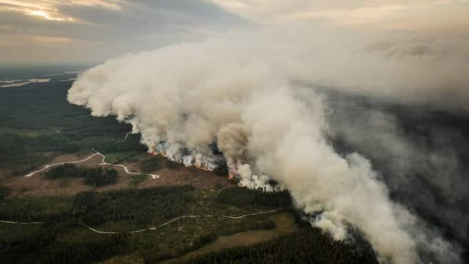 Polisen misstänker att den våldsamma skogsbranden i Västmanland startade vid ett markarbete i torsdags. Foto: Jens L'Estrade