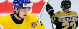 NHL får fnatt av svenskens tröja
