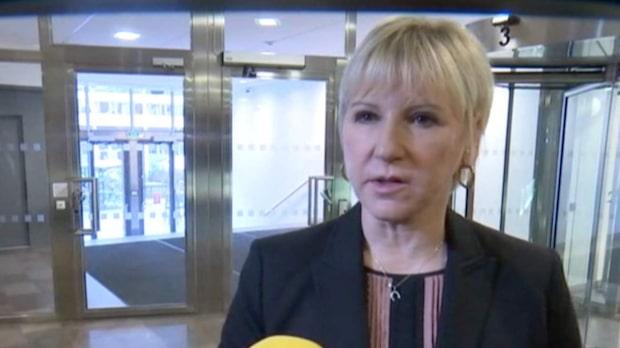 """Wallström: """"Ska göra allt vi kan för att skydda Sveriges befolkning"""""""