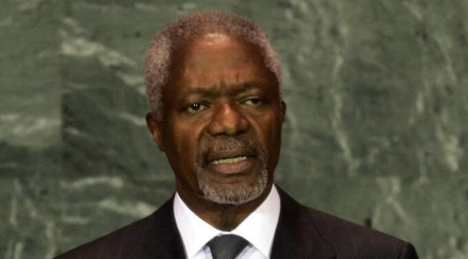 Vill legalisera cannabis. En internationell kommission, med FN:s förre generalsekreterare Kofi Annan, uppmanar regeringar att legalisera cannabis för att minska drogbrottslighetens skadeverkningar. Foto: Richard Drew