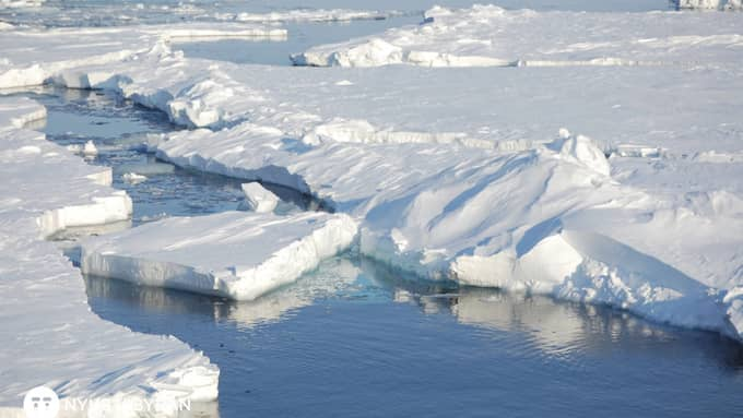 Rekordhöga temperaturer tinar upp permafrosten. Foto: DIRK NOTZ