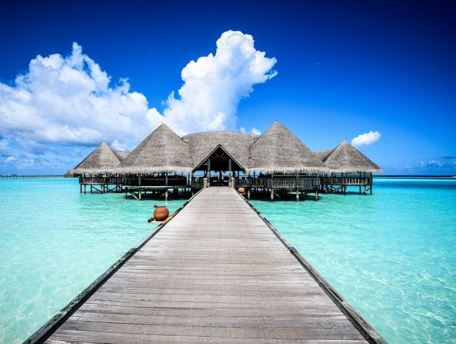 Sex turister har dött på Maldiverna sedan december.