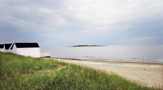 SANDSTRAND. Den sömniga villaförorten Tylösand i Halland lockar med sin långa sandstrand. I bakgrunden Tylön, dit man kan ta sig i hyrd kanot.