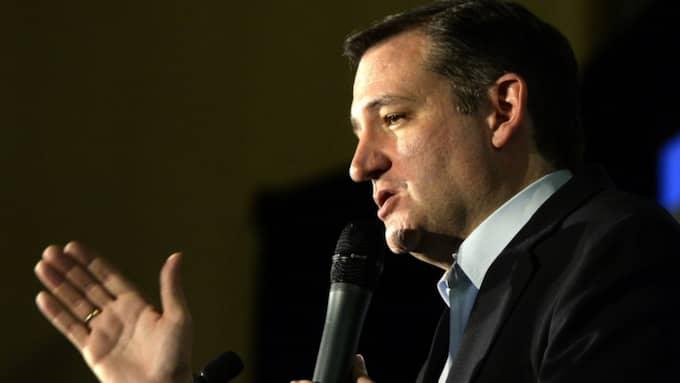 På tisdag går elva delstater till val på den republikanska sidan i Super Tuesday och Donald Trump har ledningen i de flesta. Ett undantag är Texas, men det råkar också vara senator Ted Cruz (bilden) hemstat. Foto: Mike Nelson/Epa/TT