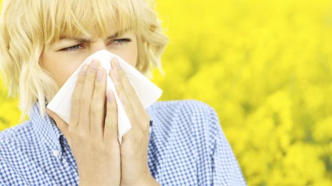 tjock i halsen pollen