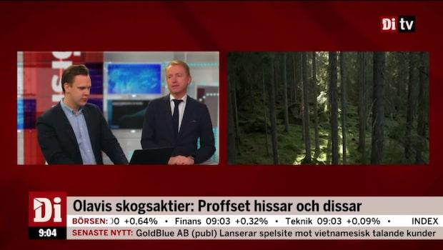 Olavi hissar och dissar skogsaktier