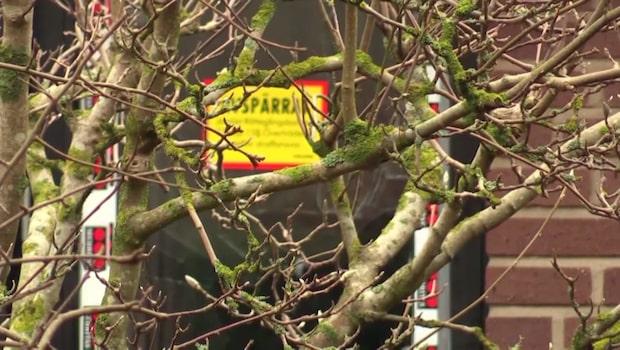 Polisernas fasansfulla upptäckt i Bjärredvillan