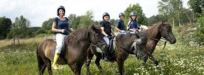 Man måste inte vara borta länge för att åka på ridsemester. Familjen Sannicolo, Helena 41, Victor, 12, Roland, 45 och Amanda 9, som aldrig ridit förr provade att rida islandshäst över en dag.