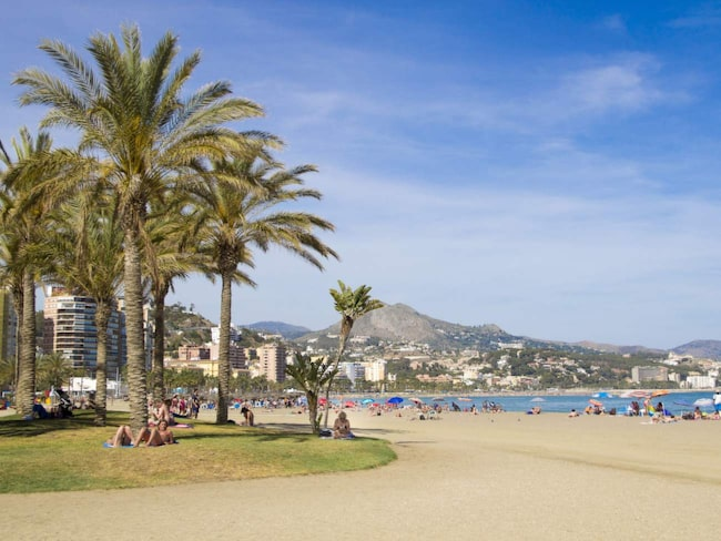 <span>Långa stränder, ett milt klimat ända in i vintern, förstklassiga krogar och ett allt bättre kulturutbud i Malaga.<br></span>