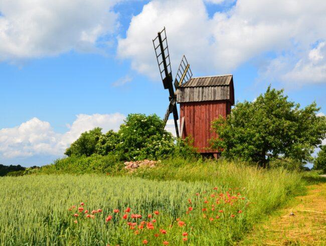 Väderkvarnar är synonymt med Öland.