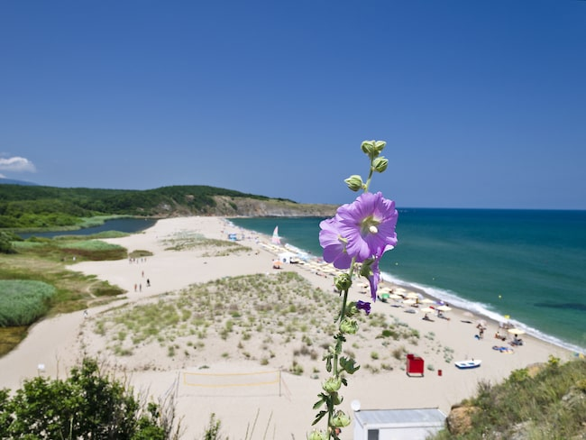 Det som lockar turisterna är Bulgariens kust utmed Svarta Havet med vackra stränder.