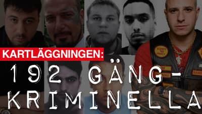 Kartläggningen: 192 gängkriminiella