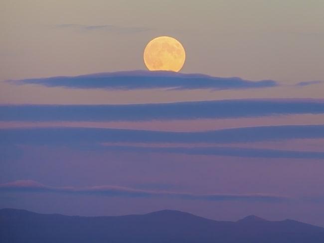"""""""Harvest Moon"""" är enligt gammal bondetradition den fullmåne som infaller närmast höstdagjämningen (på norra halvklotet)."""