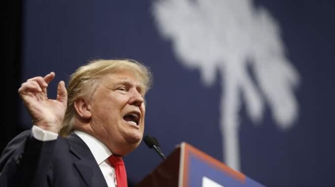 Donald Trump fortsätter att toppa mätningarna inför valet. Foto: Matt Rourke