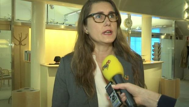"""Alm Ericsson (MP): """"Måste ta tillvara kraften"""""""