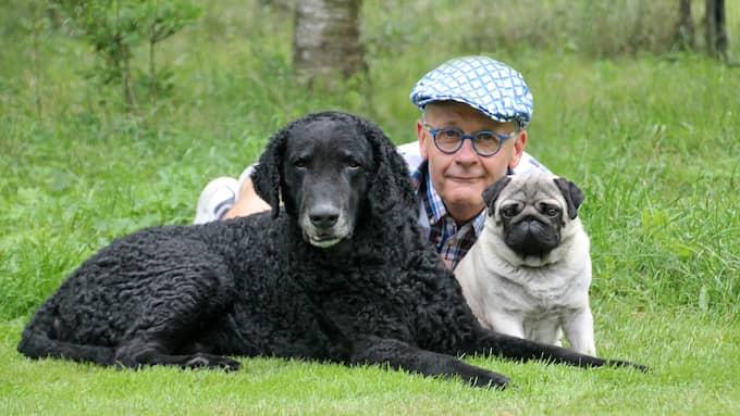 Hans Rosenberg, presstalesperson på Svenska kennelklubben, varnar för riskerna med att köpa smuggelvalpar. Foto: Anneli Granath