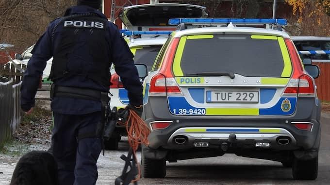 Även polishundar tas in i arbetet. Foto: Janne Åkesson/Swepix
