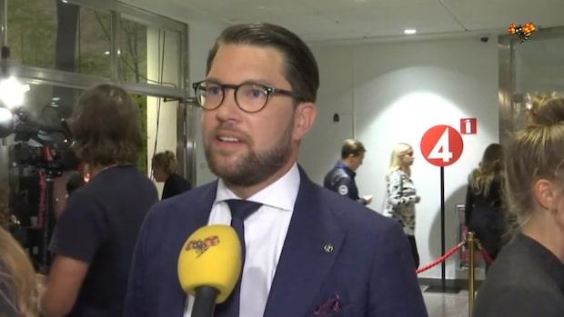 """Åkesson (SD): """"Det är groteska vidriga saker"""""""