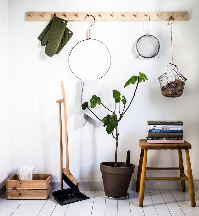 Naturligt trä och gröna växter så som detta fikusträd är ett återkommande tema i lägenheten. Hängare från Market, 29, pallen är arvegods och sopborsten från Bygg-Ole.