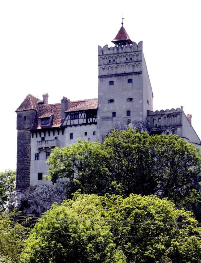 I det bergiga och skogrika området Transylvanien i västra Rumänien finns greve Draculas slott.