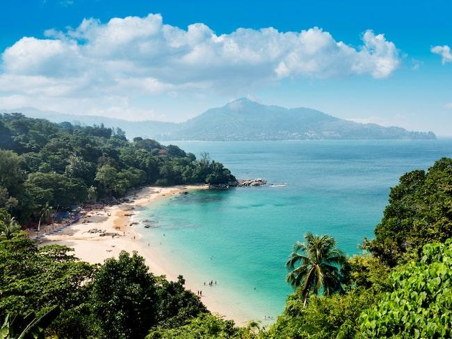 Researrangören Ving har tagit fasta på resultatet och ordnade ett jippo på en strand i Phuket.