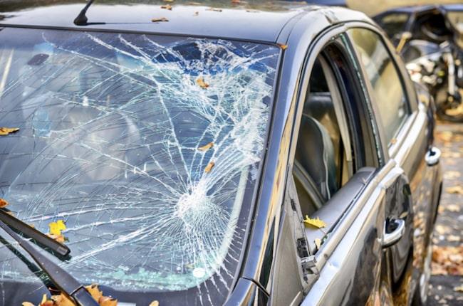 """<span>""""Det känns fantastiskt att våra bilrutor har fått en ny oväntat skepnad"""", säger Anders Jensen, vd Ryds Bilglas, som ligger bakom samarbetet. <br></span>"""