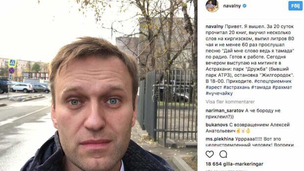 Den ryska oppositionsledaren Aleksej Navalnyj har släppts från fängelse