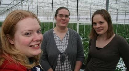 """När Boris Larsson avled av ett koldioxidutsläpp i växthuset beslöt döttrarna Caroline Andersson, Veronica Bris och Jeanette Larsson att ta över. """"Det hade känts fel att låta 35 års arbete gå till spillo, säger Caroline. Foto: TORBJÖRN ESPING/ATL"""