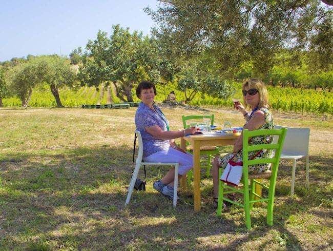 <strong>På siciliansk vingård. </strong>Britt-Inger Johansson och Elisabet Isaksson från Växjö njuter av den goda maten och drycken under ett olivträd på vingården Buonivini.
