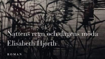 """""""Nattens regn och dagens möda"""" är Elisabeth Hjorths tredje roman. Foto: Norstedts."""