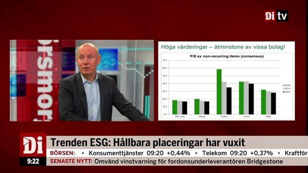 Trenden ESG: Hållbara placeringar har vuxit