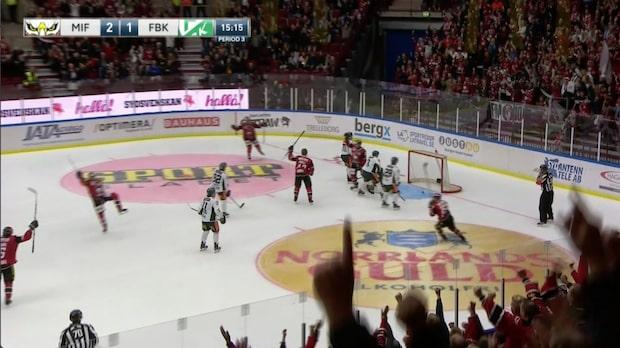 Höjdpunkter: Malmö Redhawks-Färjestad BK