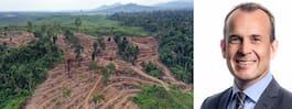 Oljejättens vd: Slutar inte köpa in palmolja