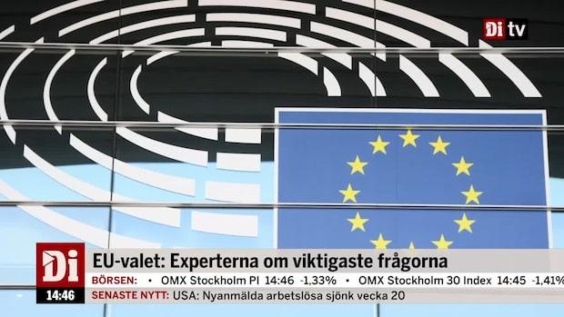 EU-valet: Experterna om viktigaste frågorna