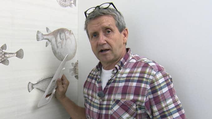 Programledaren Martin Timell kunde i många år göra sexistiska, rasistiska och homofoba utfall medan han skyddades av sina chefer. Foto: TV4