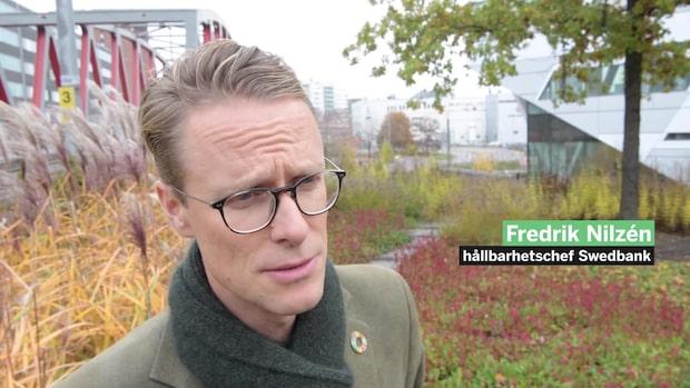 """Swedbank: """"Hållbarhet är ingen tävling"""""""