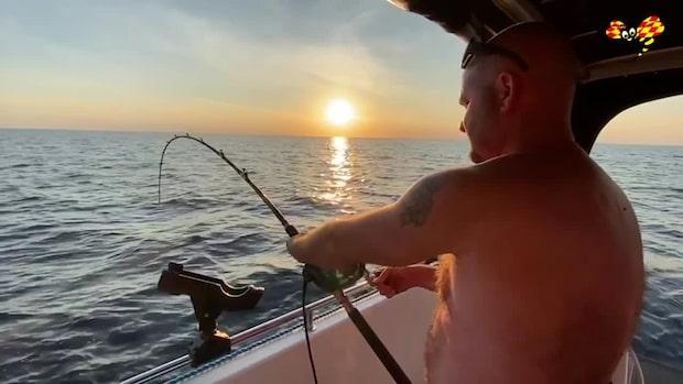 Se Niklas kamp med monsterhajen i Bohuslän – kan bli nytt svenskt rekord