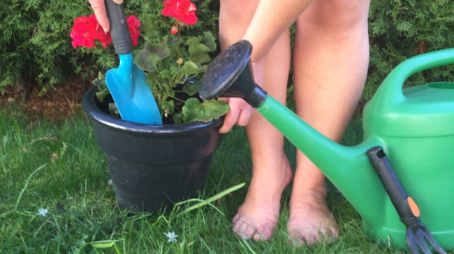 """<span>""""Dagen för nakenarbete i trädgården"""", World Naked Gardening Day, äger rum första lördagen i maj varje år. <br></span>"""