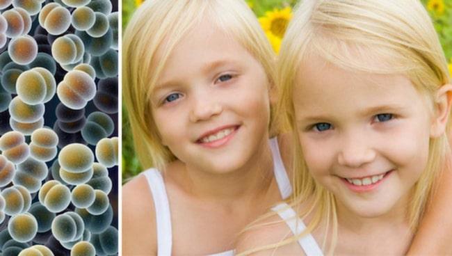 <span>Ny, unik studie visar att risken för att drabbas av cancer ökar om din tvilling insjuknar.</span>
