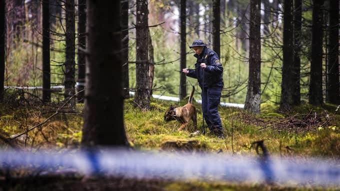 Polisen söker efter spår vid Lassalyckans motionsområde i Ulricehamn Foto: HENRIK JANSSON / GT/EXPRESSEN