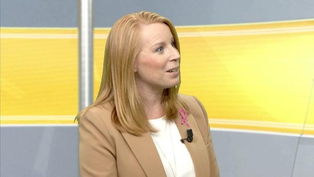 Annie Lööfs drömregering efter valet 2022