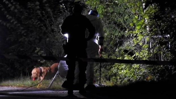 Krögare sköts ihjäl vid Ica-butik i Danderyd