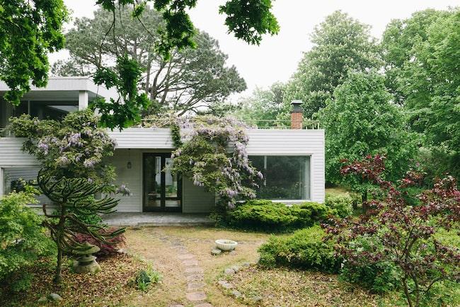 Det här är ett av endast 6 hus i Sverige som är ritade av Josef Frank. Nu är det till salu.