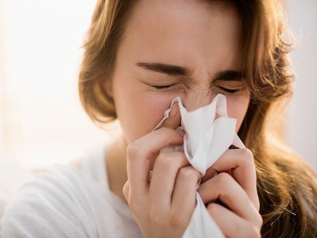 frisk från förkylning